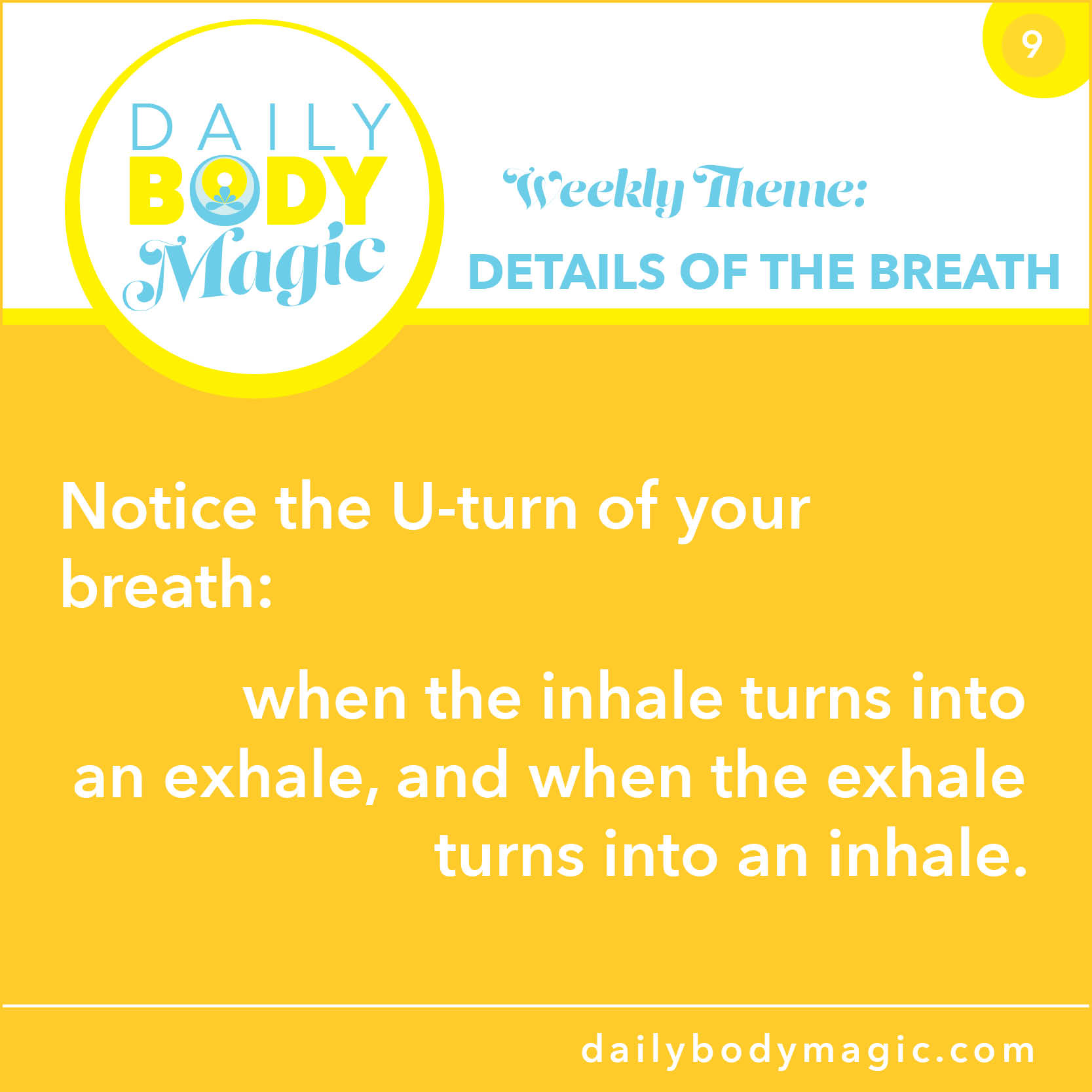Daily Body Magic 9