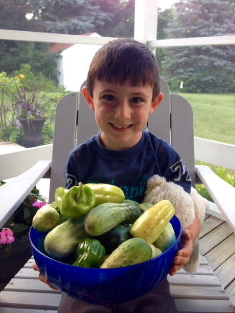 PhotoOfTheWeek cucumbers
